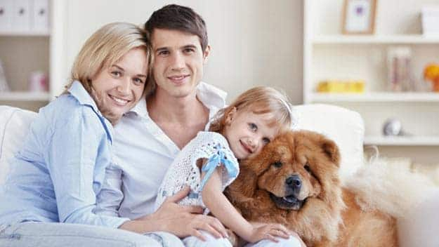 Wills & Trusts dog-young-family Direct Wills West Acton